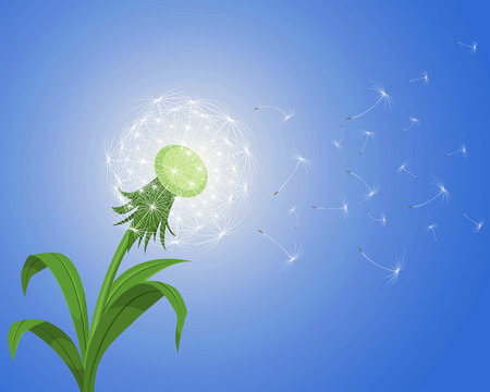 Vector illustration of a dandelion on the wind