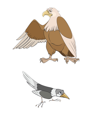 Vector illustration of a two birds: magpie and eagle