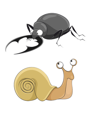 cochlea: Vector illustration of a  snail and stag-beetle