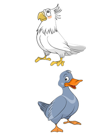 Vector illustration of a two different bird