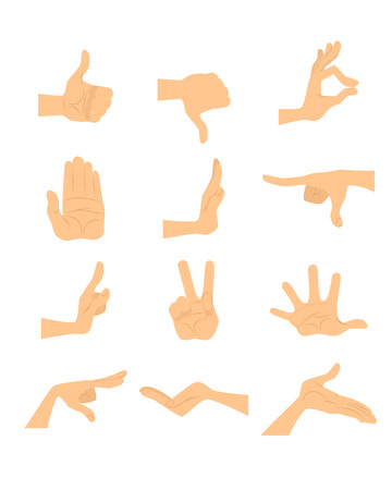 hand gestures: Vector illustration of a  hand gestures set