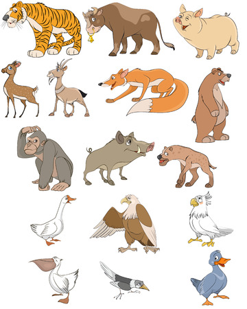 animals horned: Vector illustration of animals and birds set Illustration