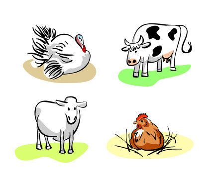 Vector illustration of a four domestic pets Фото со стока - 51919713
