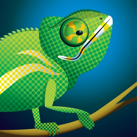 africa chameleon: This is an up close and personal portrait of a Chameleon