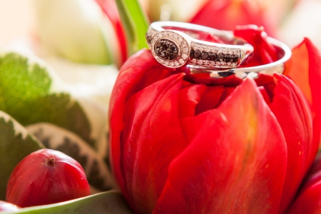 bouqet: wedding rings on a bouqet