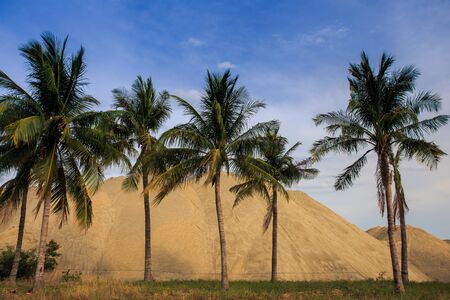 heaps: large heaps of yellow building sand behind row of palms near road against blue sky Stock Photo