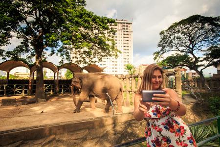 blonde girl in flowery dress makes selfie by elephant in resort city zoo