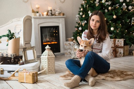 BeauGirl playing with puppy Welsh Corgi Cardigan on the background of Christmas tree and fireplace Stok Fotoğraf