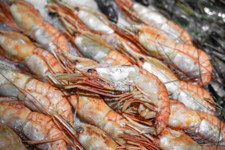 fresh shrimp on ice at the fish market