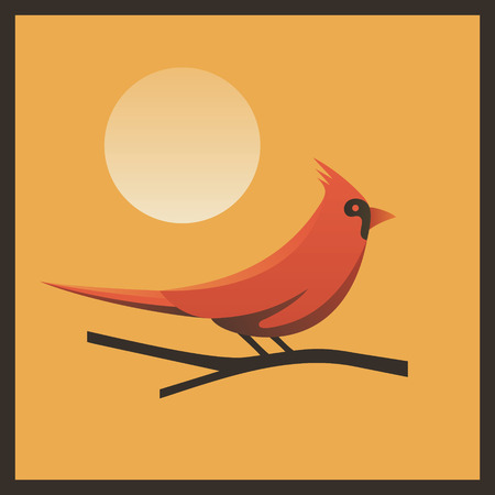 Vector Red Cardinal illustration, icon