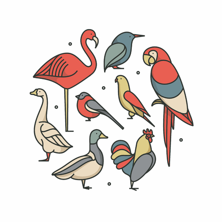 Birds outline illustration, icon set