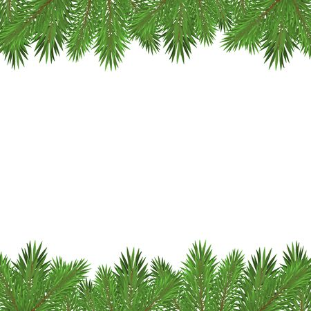 Green christmas tree branches isolated on white background.