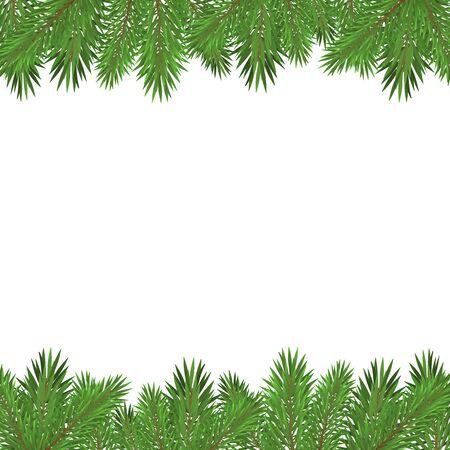 Zielone gałęzie choinki na białym tle.