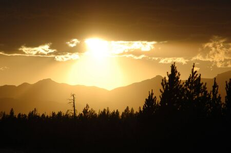 Sunset over Yellowstone with mountains, trees in silhouette