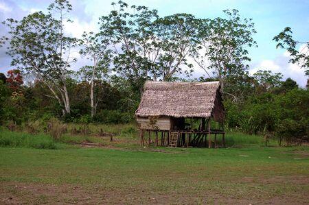 Amazon jungle single hut Stok Fotoğraf - 5896547