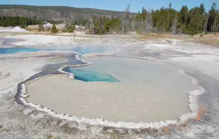 Yellowstone doublet pool with forest in the background