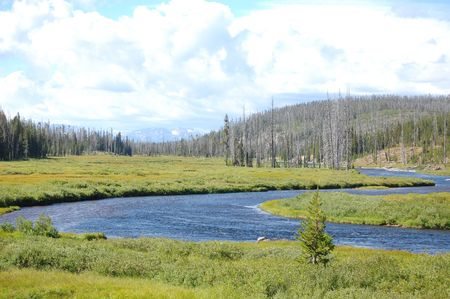 oxbow bend: Yellowstone oxbow bend landscape with meandering river Stock Photo