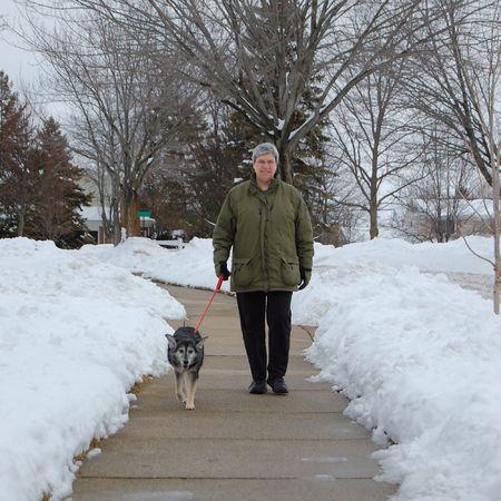perro caminar de la mujer de edad media, acera de invierno Foto de archivo