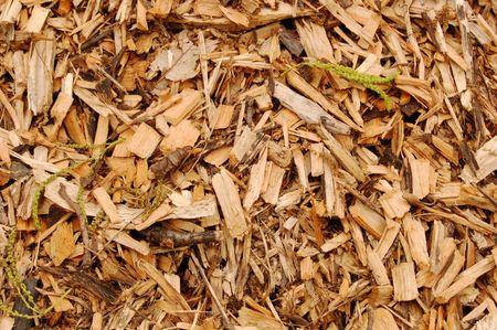 paillis: Pr�s de paillis avec des copeaux de bois brun