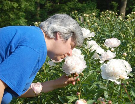 Middle aged woman smelling white peony flower photo