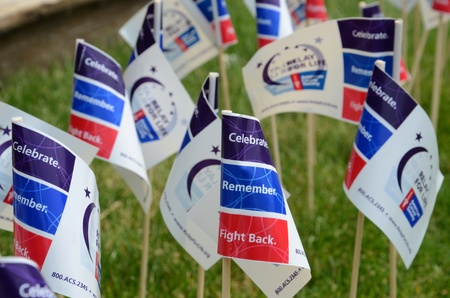 marchers: ANN ARBOR, MI - JUNE 22: Flags on display at the Relay for Life of Ann Arbor event on June 22, 2013 in Ann Arbor, MI.
