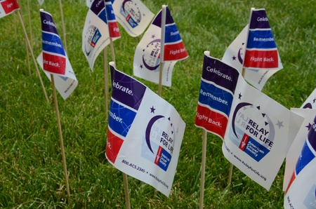 marchers: ANN ARBOR, MI - JUNE 22: Flags at the Relay for Life of Ann Arbor event on June 22, 2013 in Ann Arbor, MI.