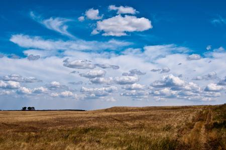 steppe: Steppe landscape Stock Photo