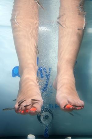 close-up of feet taking care at fish spa photo