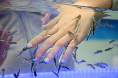 close-up of hand taking care at fish spa
