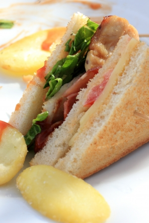 Delicious club sandwich with french fries and photo