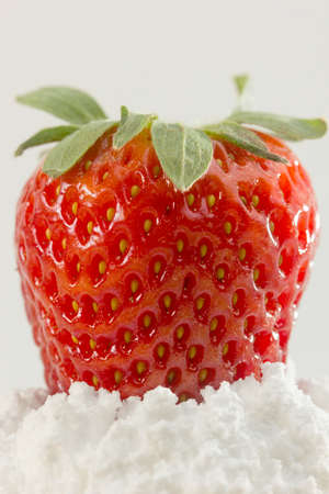 strawberies: closeup of fresh strawberry on top of sugar powder