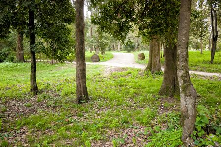 repo: park of Mon Repo with trees and paths in Corfu island