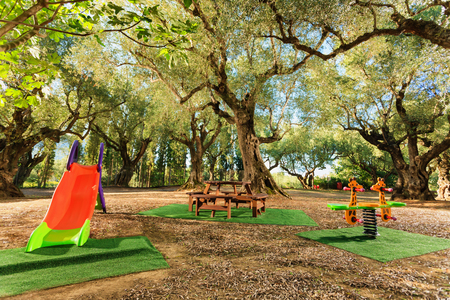on playground: modern kids playground in a beautiful garden with olive trees in a summer beach resort