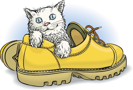 Kitten with blue eyes sitting in yellow boot