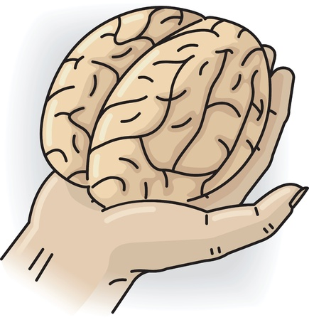 Hand holds the small brain