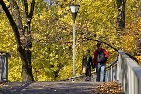 Rear view of young girl and boy walking in autumn city park photo