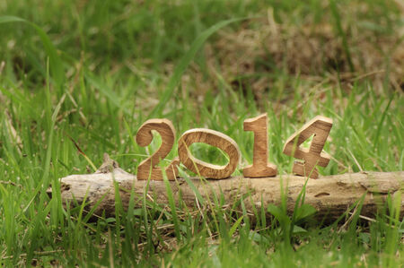 Happy New Year 2014 on grasses in the garden, natural concept photo