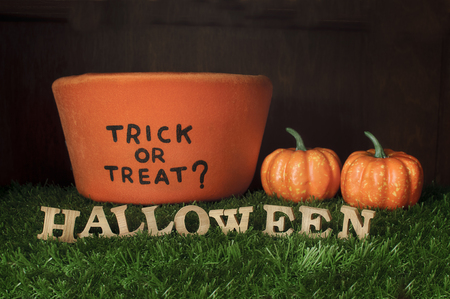 trick or treat: Halloween and Trick or Treat on grass background, nature concept and wood idea