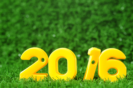 Happy New Year 2016, nature concept and colorful number idea Standard-Bild