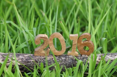 Happy New Year 2016, nature concept and wood number idea