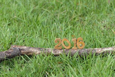 grass: Happy New Year 2016, nature concept and wood number idea