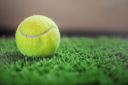 healthiness: Healthiness concept and sport background idea, tennis ball on the green grass