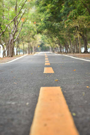 road surface: Yellow line marking on road surface in the park Stock Photo