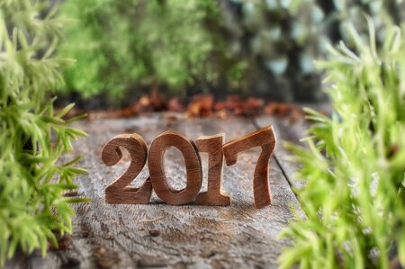 Wood number 2017 with plants on wooden background, happy new year concept and nature decorative idea