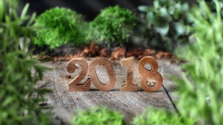 Wood number 2018 with plants on wooden background, happy new year concept and nature decorative idea