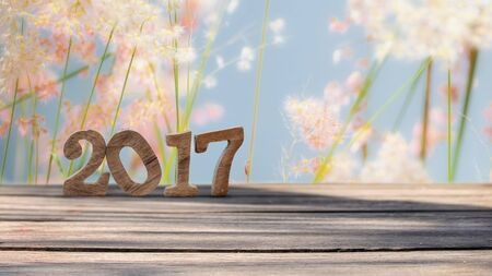 Happy new year 2017 on wooden plank and grasses flower blur background, happy summer holiday concept and nature idea