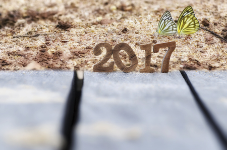 Happy new year 2017 with butterfly, happy new year concept and nature idea Stock Photo
