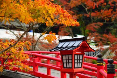 Red lantern in autumn season in the japanese garden in Minoo park, Japan Imagens