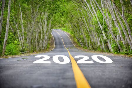 Tree tunnel with number 2020 on asphalt road surface, business success concept and natural idea