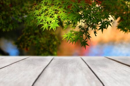 Wooden plank on maple leaves tree background, autumn season concept and display products idea